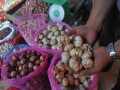 Pekerja menunjukkan bawang putih di agen pemasok bawang kawasan Pasar 16 Ilir Palembang,Sumsel,Selasa (16/5). Harga bawang putih di Palembang masih cukup tingi yakni mencapai Rp 60.000 hingga Rp 80.000 per kg dikarenakan minimnya pasokan. (Antarasumsel.com/Feny Selly/Ag/17)