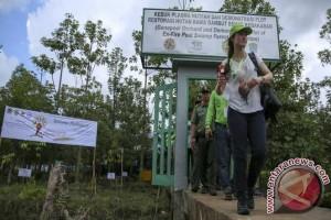"""Green South Sumatera"" butuh peran multipihak"