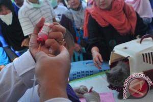 Kota Palembang wujudkan bebas rabies