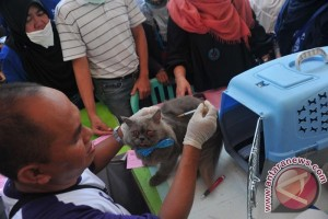 Indonesia pamerkan peralatan dokter hewan terbesar