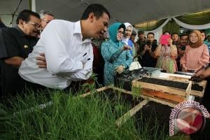 Mentan targetkan Indonesia lumbung pangan dunia 2045