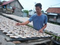 Perajin menjemur ikan yang  telah diasinkan di kawasan 5 Ulu Palembang, Sumsel, Rabu (12/7). Perajin ikan asin di bantaran Sungai Musi itu mampu mengolah ratusan kilogram ikan asin untuk memenuhi kebutuhan pasar di Sumsel. (Antarasumsel.com/Feny Selly/Ag/17)