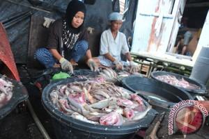 Perajin Ikan Asin Bantaran Sungai Musi