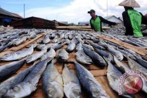Ogan Komering Ulu khawatir ikan menjadi langka