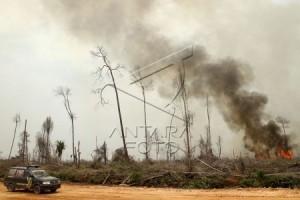 Pemkab imbau masyarakat waspada kebakaran hutan