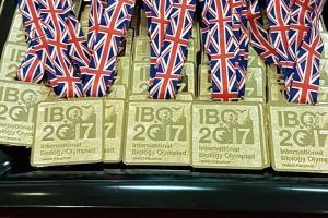 Tim Indonesia raih 20 medali olimpiade matematika