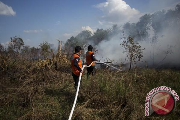Wilayah Sumsel aman dari bencana kabut asap