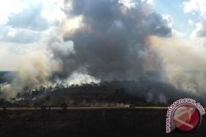 Kebakaran Lahan Di Ogan Ilir