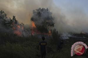 Pemadaman Kebakaran Lahan Di Ogan Ilir