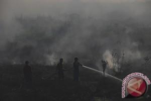 Satgas Karhutla Sumsel maksimalkan pengawasan titik api
