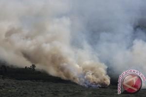 Hutan di Toba Samosir terbakar