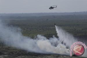 Jelang Asian Games, Sumsel cegah kebakaran hutan