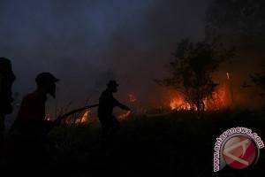 Kebakaran lahan gambut di Kawasan Palembang-Inderalaya