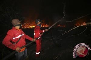 Satgas Karhutla fokus patroli daerah rawan terbakar