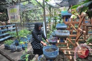 Kampung Hijau Pinggiran Kota