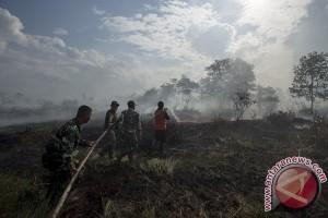 Upaya Pemprov Sumsel cegah kabut asap