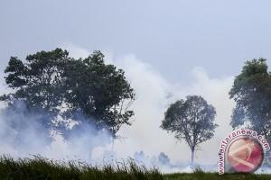 Gubernur Sumsel: Kabut asap pagi masih normal