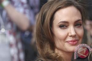 Angelina Jolie lantang kecam kekerasan seksual pengungsi Rohingya