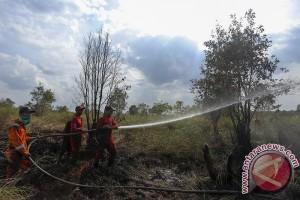 Mengantisipasi kebakaran hutan dan lahan di Indonesia