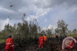 BPBD Sumsel usulkan tambahan heli cegah kebakaran hutan