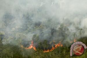 Kebakaran Hutan dan Lahan Di Ogan Ilir