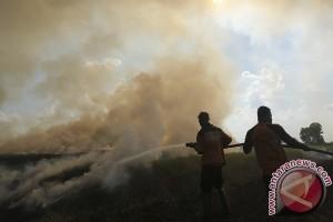 Berjuang cegah kebakaran dengan lestarikan hutan desa