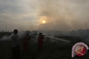 Seluas 5 hektare lahan gambut di Siak terbakar