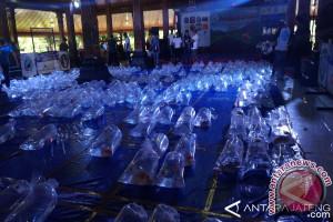 Ratusan ikan koi ikuti kontes