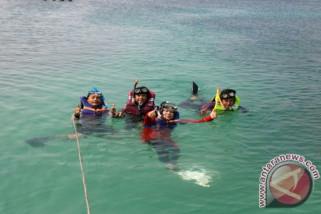 Wisatawan Palembang padati Pulau Pahawang