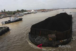 KPK temukan indikasi kebocoran pajak batu bara