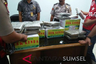 Polisi selidiki penyelundupan ganja di Bandara SMB II Palembang