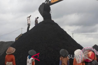 Greenpeace: Penggunaan batubara beresiko bagi kesehatan manusia