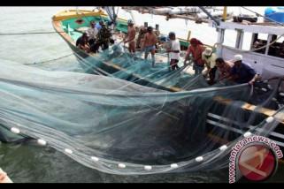 DKP: 137 kapal trawl masi beroperasi di Mukomuko