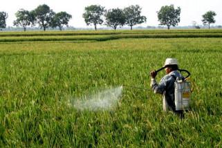 Pertanian pintar solusi atasi perubahan iklim