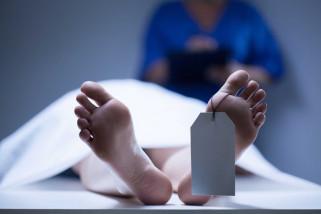 11 orang jamaah haji Sumsel meninggal di Arab Saudi