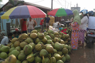 Meraup untung musiman dari es kelapa muda saat ramadhan