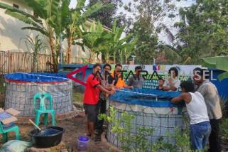 Jejak Indonesia sediakan pakan lele sampai panen