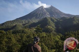 Lontaran material Gunung Merapi bakar hutan