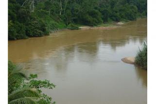 Walhi soroti pencemaran sungai Mertam