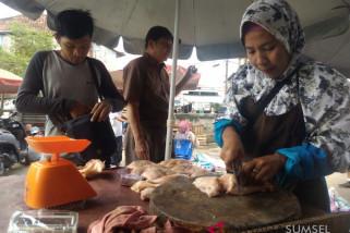Harga daging ayam potong melejit