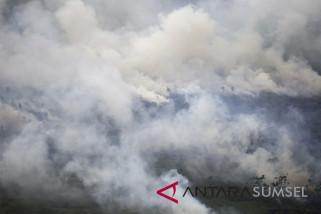 Kebakaran Lahan Di Pedamaran Timur