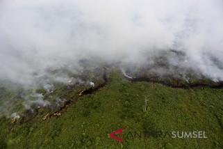 Puluhan hektare lahan gambut penajam terbakar