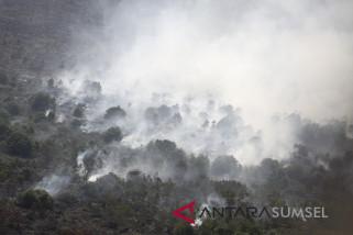 Polda Sumsel selesaikan tiga berkas kasus kebakaran hutan