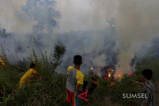 Kebakaran hutan dan lahan di Sumatera makin parah