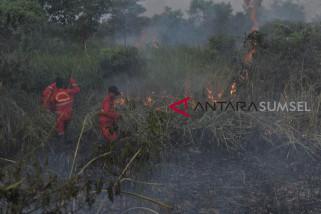 Penegakan hukum berlapis kasus kebakaran hutan dan lahan