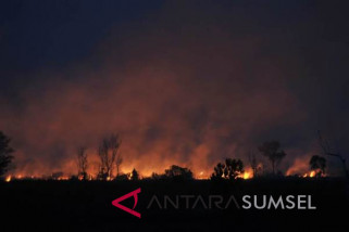Cegah kebakaran hutan dan lahan dengan pendekatan kemanusiaan