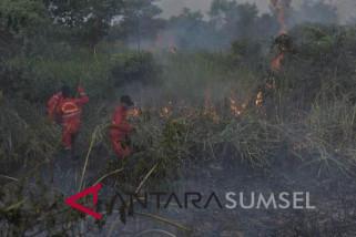Tiga Kabupaten Sumsel masih rawan kebakaran lahan
