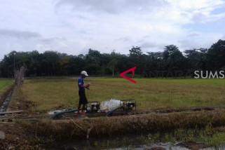 Sawah kering, petani gunakan mesin pompa air
