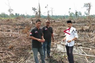Presiden minta perusahaan kayu ajak masyarakat menanam