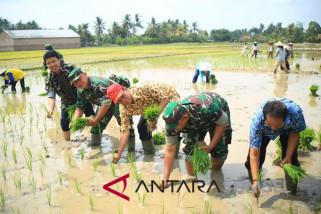 Kementan bantu alat pertanian petani Sumsel